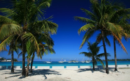 Overlooking Paradise Island